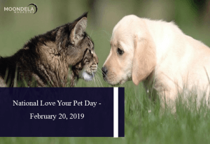 National Love Your Pet Day - February 20, 2019