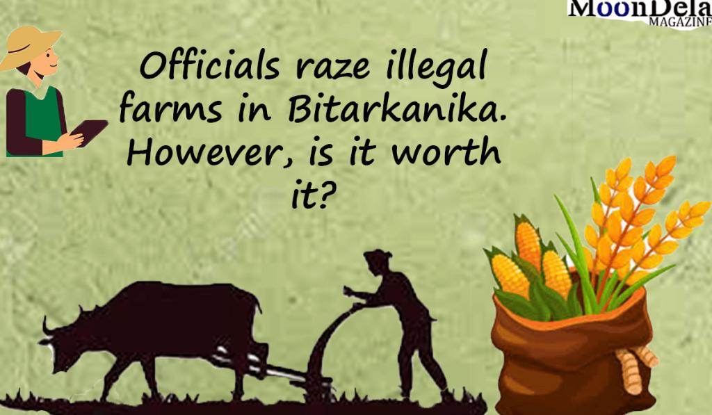 illegal-farm